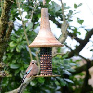 birds on bird feeder