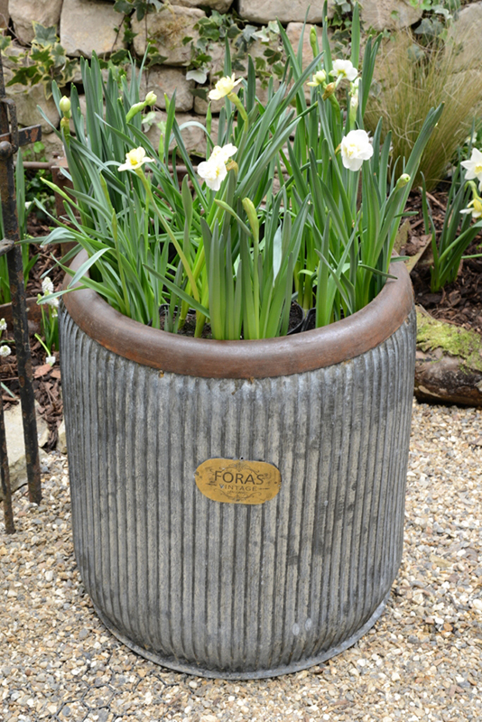Wootton vintage metal tub planter the perfect vintage for Large metal tub for gardening