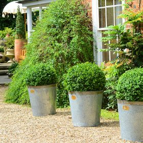Larger Capacity Keswick Planters