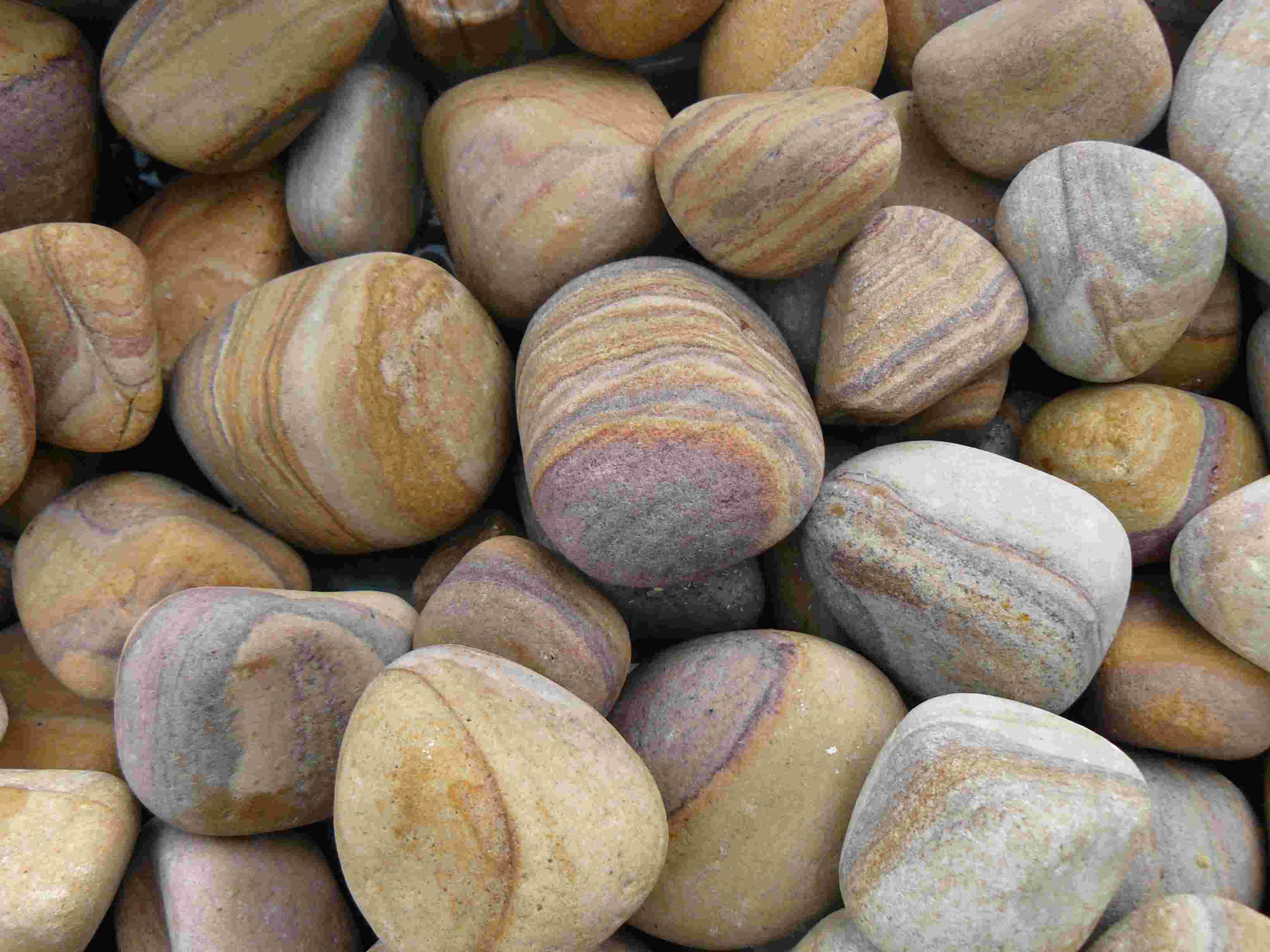Buy foras rainbow sandstone pebbles 25kg bags for Decorative river stones