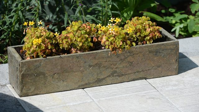 Natural Slate Planters