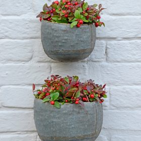 NEW Myrtle Graphite Galvanised Iron Wall Planters – Set Of 2 (PRE-ORDER)