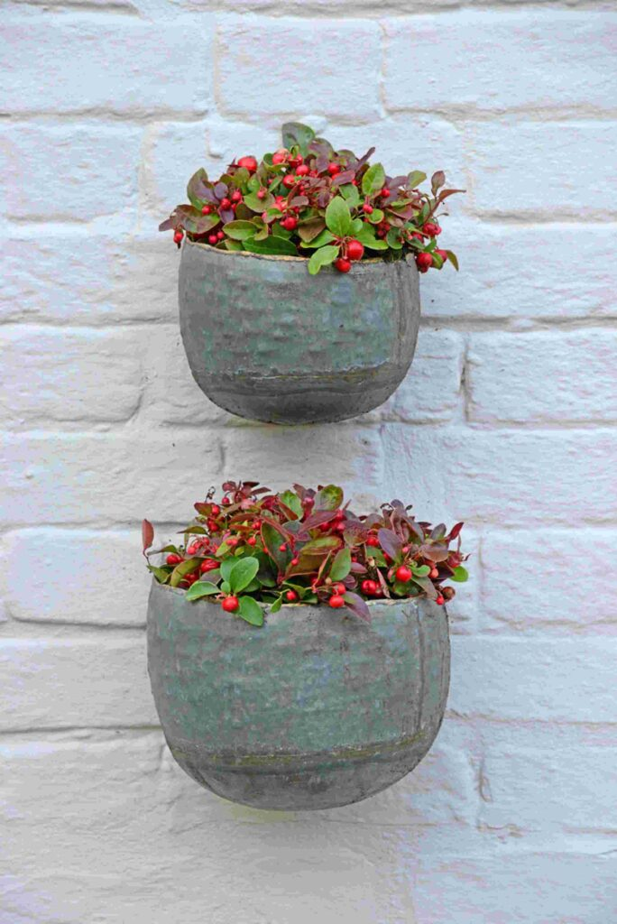 NEW Myrtle Wall Planters - Set Of 2