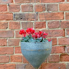 NEW Clover Graphite Galvanised Iron Hanging Planter (PRE-ORDER)