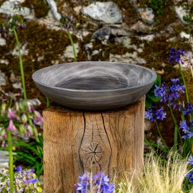Flight Shark Birdbath on Weathered Oak Plinth