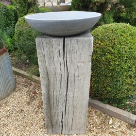 Horton Shark Birdbath on Weathered Oak Plinth