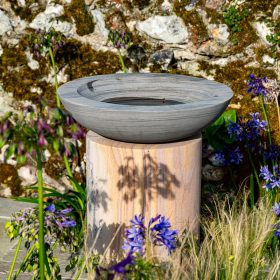 Acorn Shark Birdbath on Circular Rainbow Sandstone Plinth