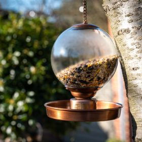 Douglas Bird Feeder PRE-ORDER Spring 2020