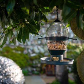 Hazel Bird Feeder PRE-ORDER Spring 2020
